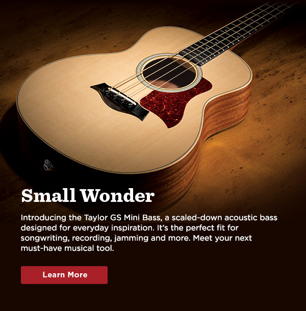 Small Wonder - Introducing the Taylor GS Mini Bass...